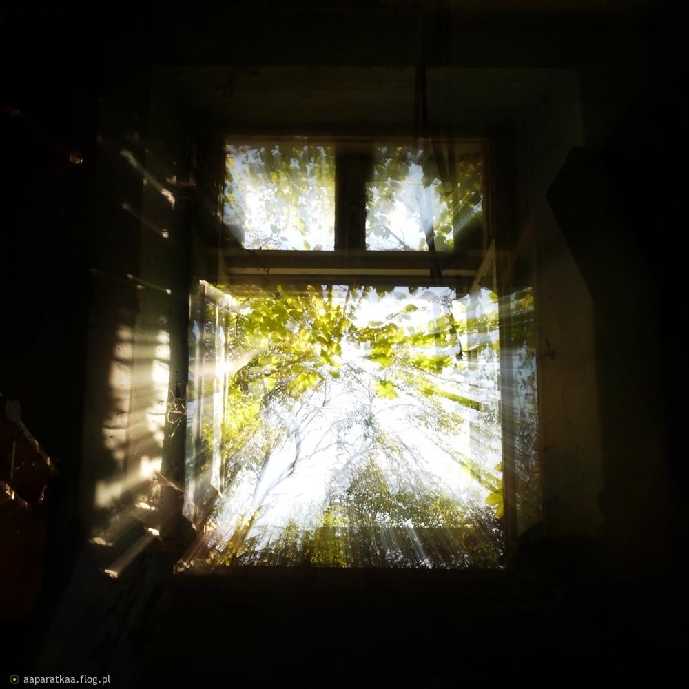 Jasne okno dnia świat otwiera znów ...