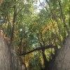 Wąwóz królowej Jadwigi - <br />Sandomierz